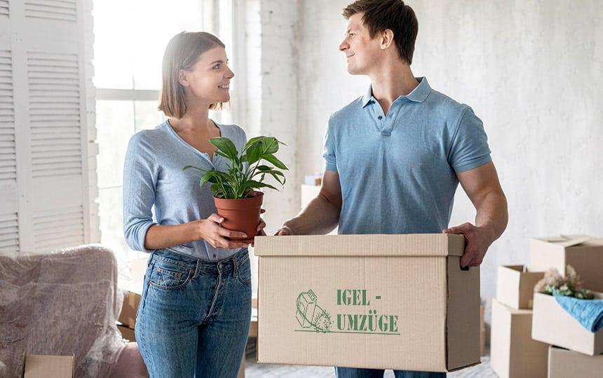 Pflanzen Transportieren Checkliste